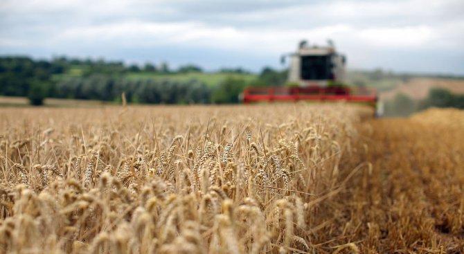 Утре е крайният срок за пререгистрация на земеделските стопани