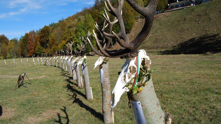 Стотици ловци се събраха да видят трофеите от благороден елен