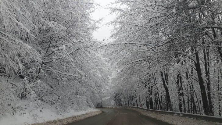Пътищата в областта са почистени и проходими, 25 см. сняг на Шипка