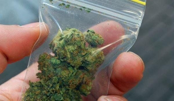 Закопчаха 25-годишен за притежание на марихуана