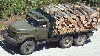 """Агатовец си """"набра"""" 4 кубика дърва от Кормянско"""