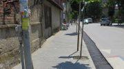 Младежи унищожават новозасадени дръвчета в Севлиево