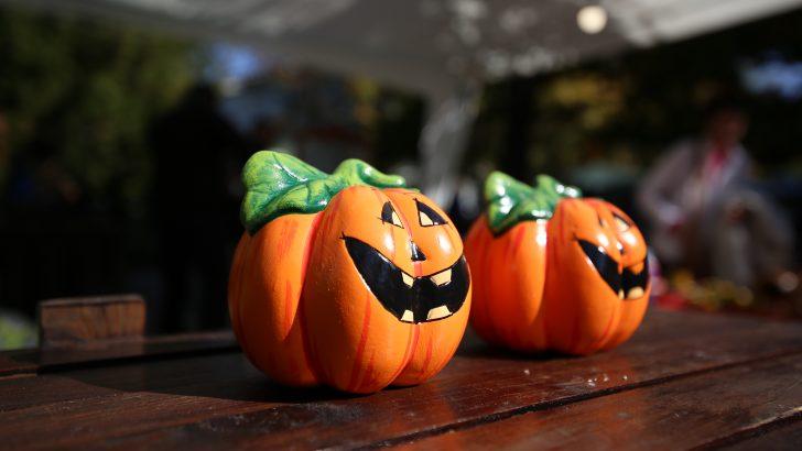 Севлиево празнува от 11 до 14 октомври