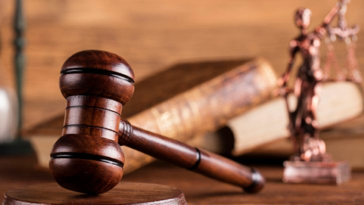 Съдят управител на дърводобивна фирма за смъртта на работник
