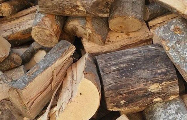 Горското стопанство предоставя 200 кубика дърва за огрев на местното население