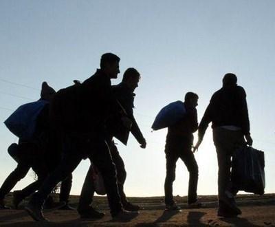 Севлиевски митничари се натъкнаха на трима афганистанци след три дни в ремаркето на турски тир