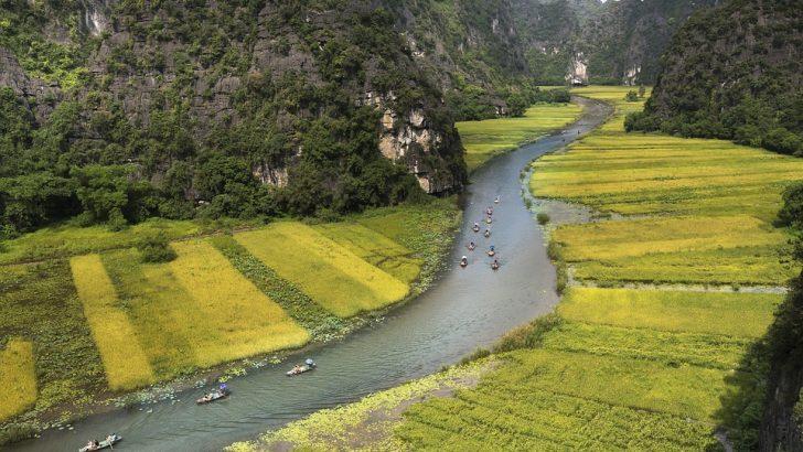 Световен ден на влажните зони