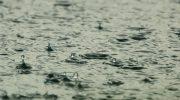 Дъжд и гръмотевици вещаят синоптиците