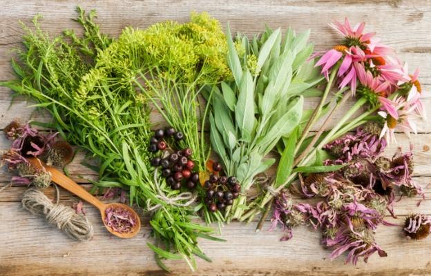 Фестивалът на билките ще се проведе в село Младен