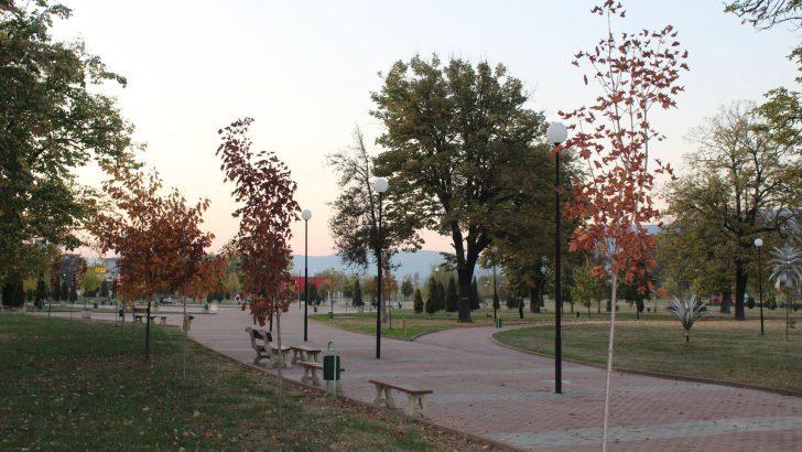 Над 200 нови дървета са засадени в Севлиево през тази година
