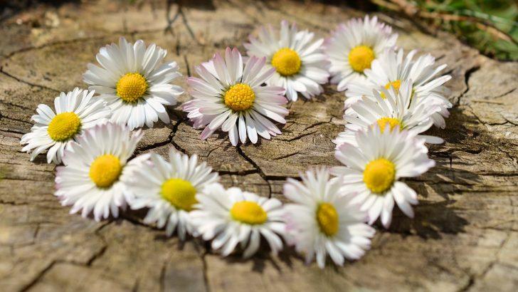 """МБАЛ """"Свети Иван Рилски""""-Габрово: Благодарим Ви, дарители! Знайте, че доброто винаги се връща удвоено!"""