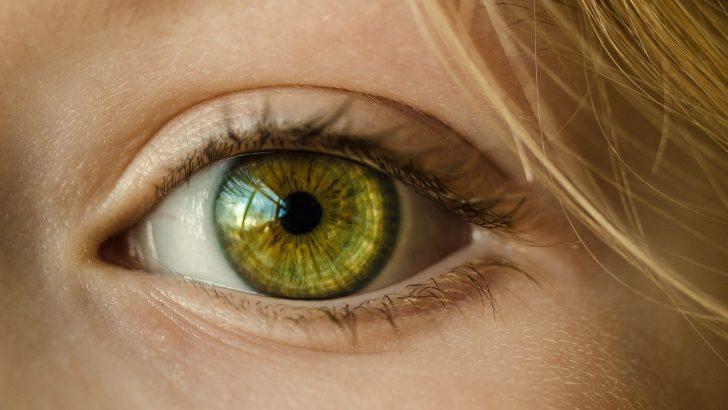 Безплатни очни прегледи за деца и възрастни ще се проведат в Севлиево