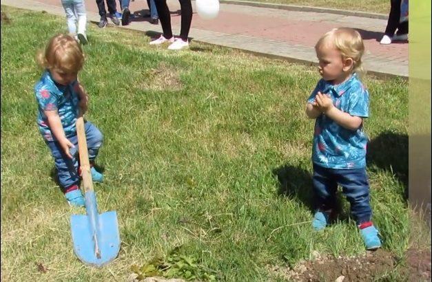 """Малки и големи садиха дървета в зелената иницатива на """"Семе българско"""""""